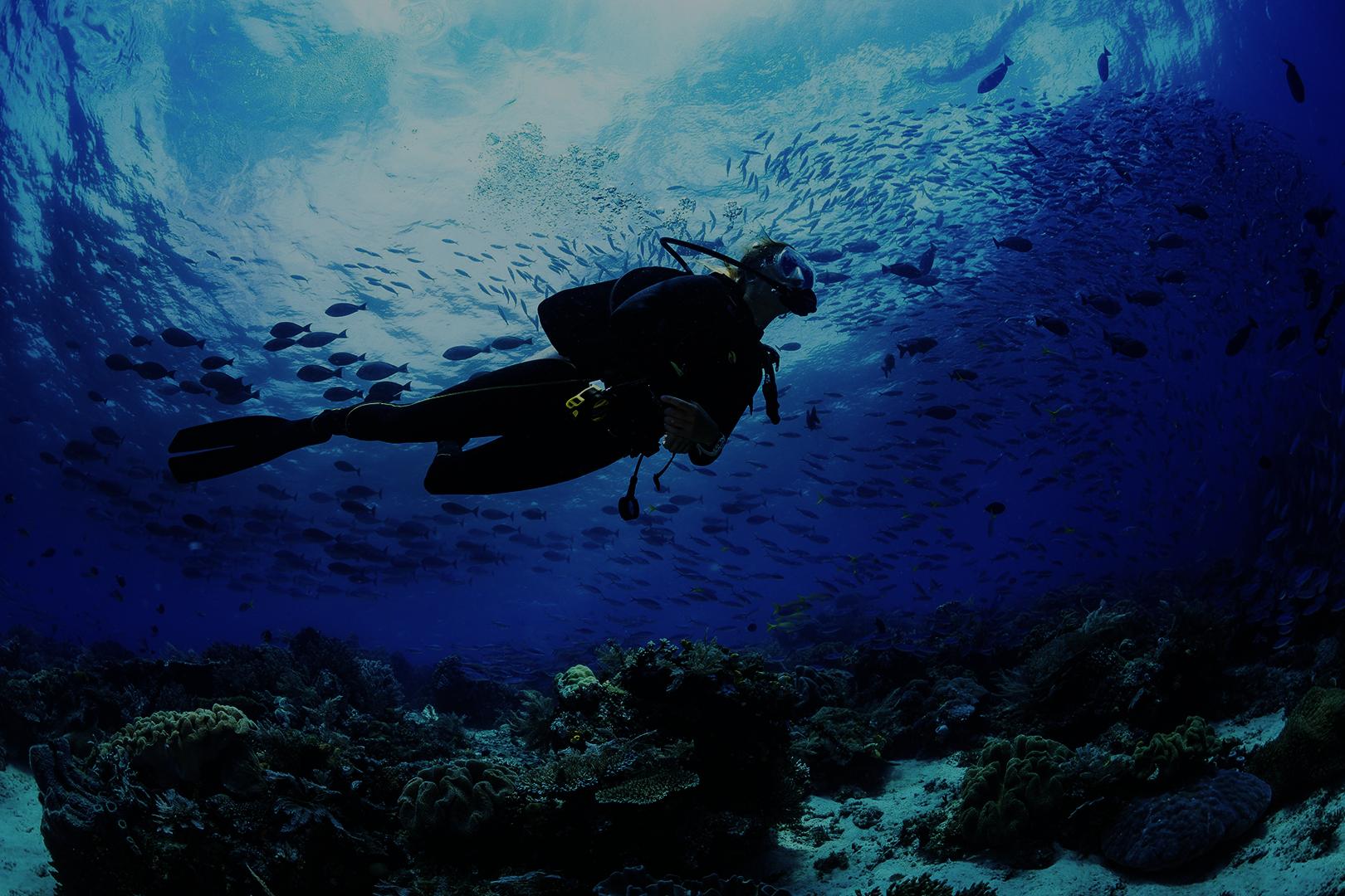 Nettoyer les océans c'est pas la mer à boire